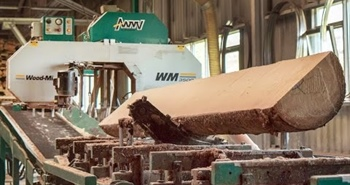 Wood-Mizer WM3500 sawmill at work in the Czech Republic